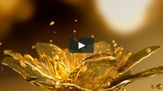 The history of Whoo : Self-Generating Anti-Aging Essence on Vimeo 4k Wallpapers For Pc, Catalog Design, Wallpaper Pc, Motion Design, Motion Graphics, Anti Aging, Projects To Try, Behance, This Or That Questions