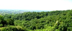 The view from the top of Ebbor Gorge in Somerset