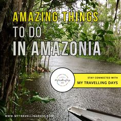 A plenty of tips and ideas for travelers to explore Amazonia, the Adventurous and interesting things to do in Amazonia Ecuador. • Kapok observation tower • Yasuni National Park • Amazonia Coca  #TravelTipsAmazonia #TravelExperienceAmazonia Stuff To Do, Things To Do, Ecuador, National Parks, Tower, Explore, Adventure, Amazing, Day