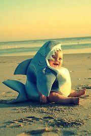 Hahaha i may not like babies but...i do love sharks!