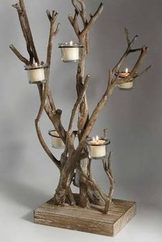 Arboles secos decorados con plantas