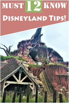 12 amazing Disneyland secrets, tips and tricks! Disney parks  disneyland  californiaadventure  california Disney Now, Disney Theme, Disney Tips, Disney Cruise Line, Disney Parks, Disney Stuff, Disneyland Secrets, Disneyland Vacation, Disney Vacations