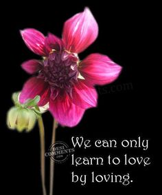 14 We can only learn to love by loving