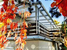 Drewniane zadaszenie tarasu na zamówienie / Zakład Stolarski Poznań Pergola, Fair Grounds, Travel, Bulgaria, Decor, Patio Shade, Patio Roof, Houses, Glass Roof
