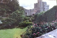 Windsor Castle, Windsor UK. On our honeymoon. ❤