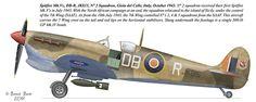 Spitfire Mk.Vc, DB-R, JK815, N° 2 Squadron, Gioia del Colle, Italy, October 1943,