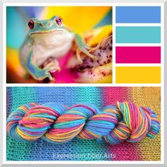 "TREE FROG - Color Shifting ""Spectrum"" Wool Worsted Wt Yarn - 175 yd/100 g - Expression Fiber Arts"