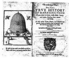 John Levett (author) - Wikipedia, the free encyclopedia