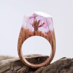 Inside Each of These Wooden Rings Is a Beautiful Hidden World.