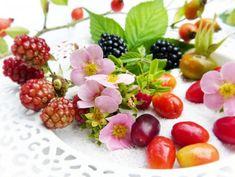 Moruša, černice, brusnice - sladké lieky z lesa.