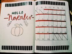 My monthly log in my Bullet Journal