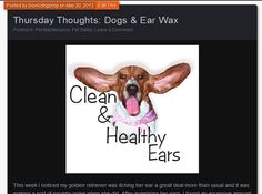 Thursday Thoughts: How to Clean Your Dog's Ears #BIONIC www.bionicdogblog.wordpress.com