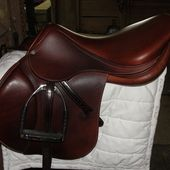 antares saddle for sale English for sale in Loxahatchee, Florida :: HorseClicks
