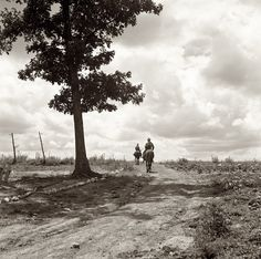 """July 1939. """"Sons of Negro tenant farmer go visiting on a Saturday afternoon."""" Granville County, North Carolina."""
