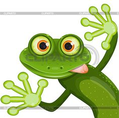 frog cartoon pictures - Google Search