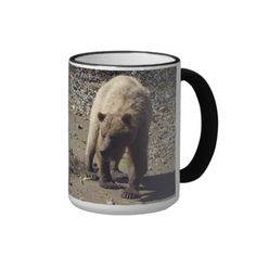 Walking Wild Grizzly Bear Wildlife Photo Coffee Mugs