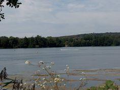 Les étangs de Brognard à la base de loisir ! #FrancheComté #LeDoubsHibou