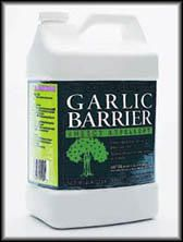Liquid garlic extract used to repel insects. Yes, our urban homestead smells like a salad.