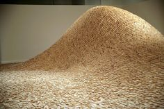 Maya Lin- Systematic Landscape- 2006