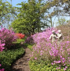 Adam and Eve in the Garden: Ladew Topiary Gardens
