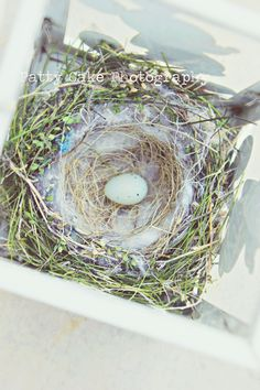 A sweet surprise to stumble upon...a homespun birdies nest with one speckled egg...