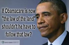Obama is the law of the land, throw away the constitution...he/ and half of public will not need it.