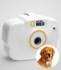 Funny Gifts Unique Gifts - National Geographic Pet's Eye View Camera - Nat Geo Digital Pet Collar Camera