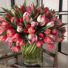 Bouquet of tulips Fresh Flowers, Spring Flowers, Beautiful Flowers, Beautiful Beautiful, Draw Flowers, Tulpen Arrangements, Floral Arrangements, Parrot Tulips, Pink Tulips