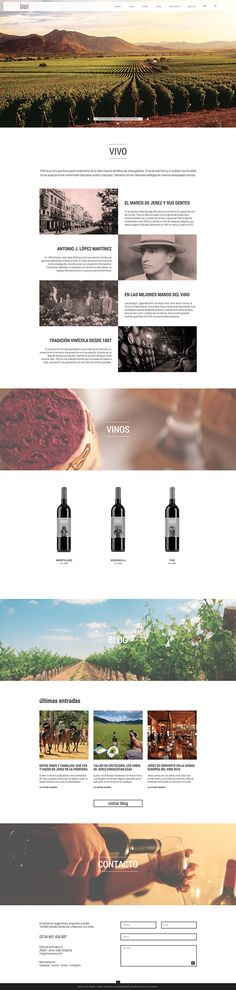 VIVO wines on Behance