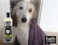 Θα λούζατε το σκυλάκι σας με ένα προϊόν που έχει δοκιμαστεί σε ζώα; 🐕 Τα #crueltyfree προϊόντα είναι και για τους τετράποδους φίλους μας 💞 #crueltyfreepetcare #crueltyfreedogshampoo #naturalpetcare #dogshampoo Natural Dog Shampoo, Happy Dogs, Cruelty Free