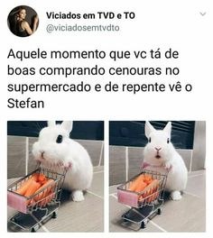 Q maldade kkkk The Salvatore Brothers, Hello Brother, Original Vampire, Mystic Falls, Sad Day, Stefan Salvatore, Malec, Vampire Diaries The Originals, Delena