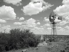 Windmills in the Karoo