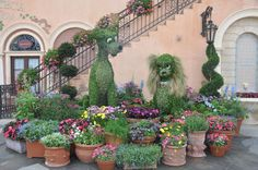 Disney Epcot  flower and garden show.  I want to go there!