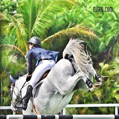 Now that's a back-cracking jump ©Bigeq.com