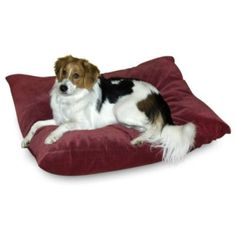 Happy Hounds Bandit Dog Bed - Small(24 x 36&#34) - Garnet $29.99