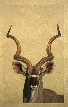 Don't even know what a Kudu is -- but this one's awesome! James W Johnson - Kudu Print
