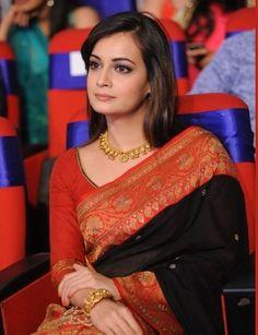 Dia Mirza at TV9 TSR National Film Awards 2013 - Beauty and Fashion