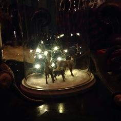 Glass dome cloche decorating on pinterest bell jars for Mica decoration cloche