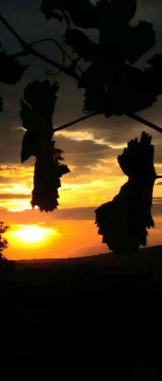 Erlebe traumhafte Sonnenuntergänge... Celestial, Sunset, Outdoor, Sun Rays, Landscape, Summer, Outdoors, Sunsets, Outdoor Games