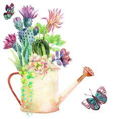 Watercolor plantas suculentas. - ilustración de arte vectorial