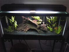 black substrate - Google Search