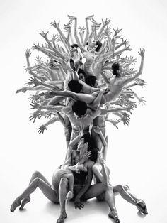 Dancers Posing as a Tree