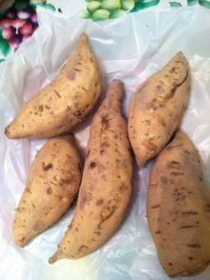 White Hayman Sweet potato. Eastern Shore of Virginia