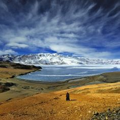 Ladakh in Winter India Travel, Us Travel, Big Chill, Travel Bugs, Nature Pictures, The Good Place, Adventure, Mountains, Amazing Places