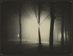 Lyonel Feininger - Untitled (Night View of Trees and Streetlamp, Burgk[uhnauer Allee, Dessau), 1928