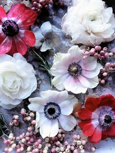 Shared by ℓυηα мι αηgєℓ ♡. Find images and videos about cute, beautiful and flowers on We Heart It - the app to get lost in what you love. All Flowers, Fresh Flowers, Beautiful Flowers, Wedding Flowers, Anemone Flower, My Flower, Floral Arrangements, Planting Flowers, Inspiration
