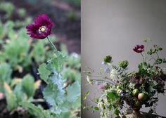 Gorgeous floral arrangement by Sarah Ryhanen for Saipua