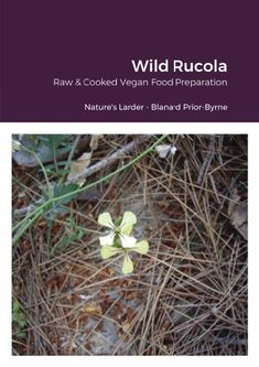 Wild Rucola is a book of the ever discerning reader that would like to learn to prepare healthy high raw and cooked vegan food. Gaining the knowledge to practice a plant based diet, combine it well, sustain a healthy lifestyle, gain weight or use it instead of lose it . Whether it is just a part of time need for raw food energy whether it be vegan or not, or the necessity of getting healthy, detoxing and feeling great, this may have some of the ideal base beliefs that anyone can integrate… Raw Food Recipes, Vegan Food, Food Energy, Plant Based Diet, Health Diet, Food Preparation, Weight Gain, How To Stay Healthy, Healthy Lifestyle