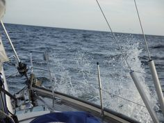 Us Sailing, Dolphins, Finland, Denmark, Norway, Sweden, Southern, Europe, Lust