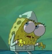 23 Ideas memes cartoon spongebob for 2019 Stupid Memes, Dankest Memes, Funny Memes, Life Memes, Cartoon Cartoon, Cartoon Wallpaper, Reaction Pictures, Funny Pictures, Memes Spongebob